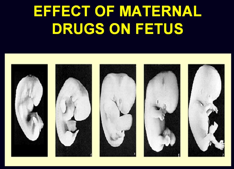 EFFECT-OF-MATERNAL-DRUGS-ON-FETUS--MATERNITY-NURSING-ppt