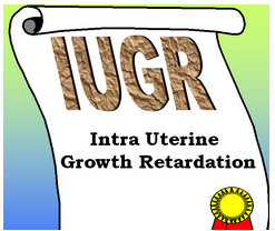 Intra uterine growth retardation Presentation